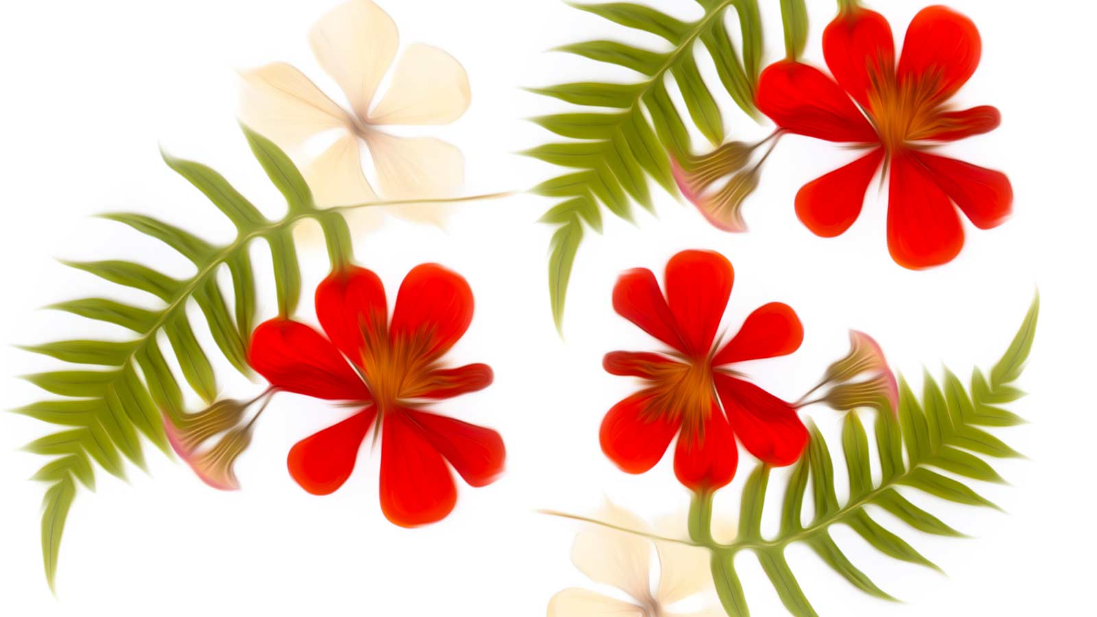 Rich clipart png images   PNGEgg
