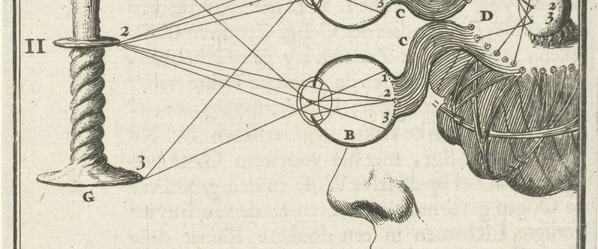 Willem Goeree and the production of knowledge